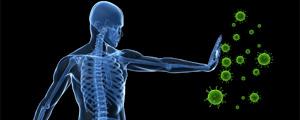 Immune-System-Function